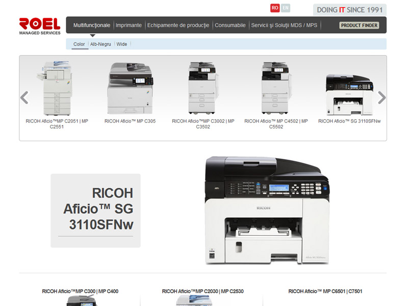 Roel Group - Catalog online, Creare site web